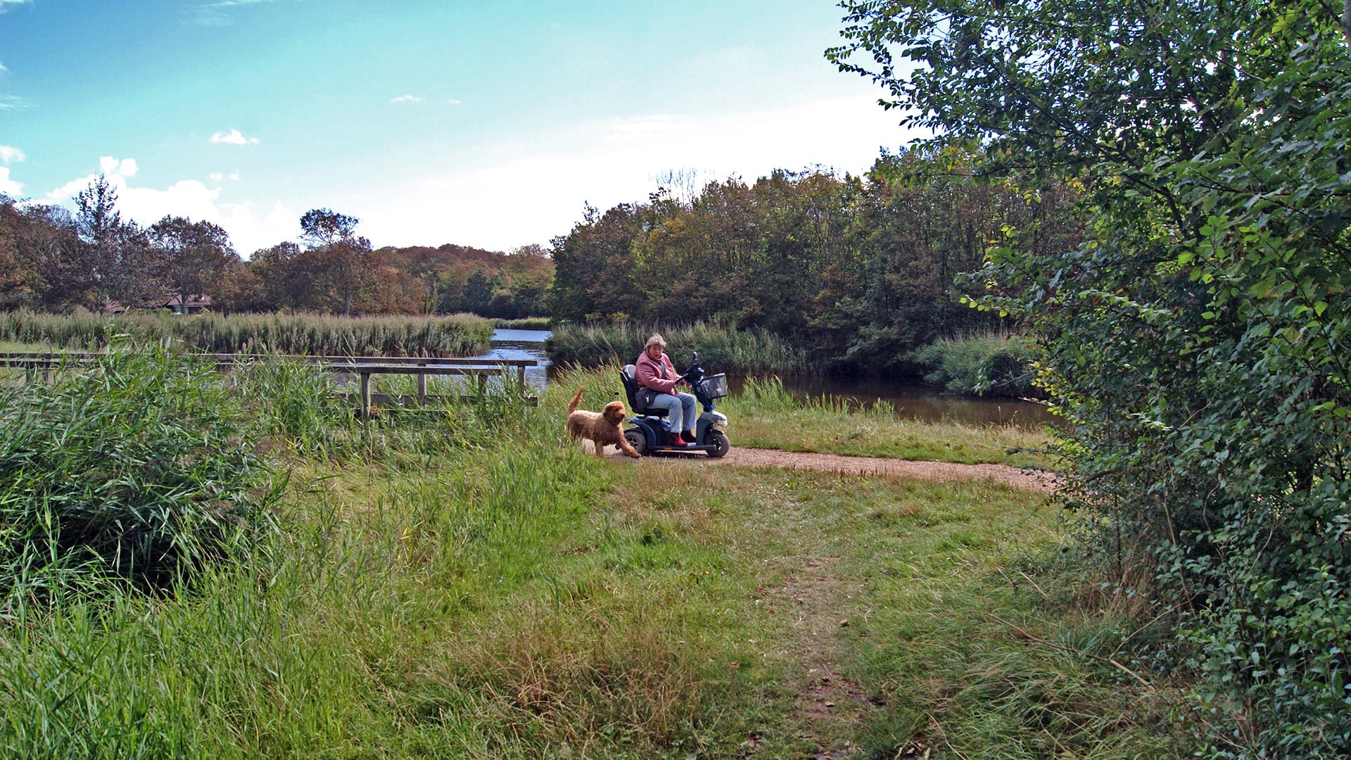 streefbeeld-stichting-van-woelderen-park-2021-wandelpier-voor