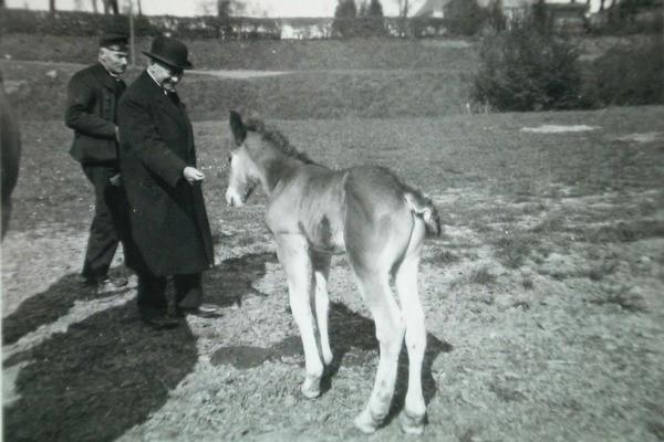 Burgemeester C.A. van Woelderen op bezoek bij het hof van Tannetje Kodde te Vlissingen op 3 mei 1942